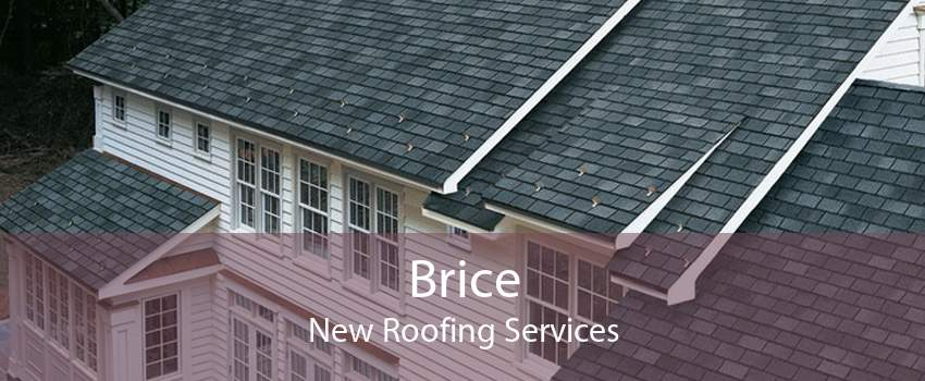 Brice New Roofing Services